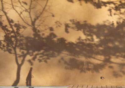 depierresetdebois-assions16-enduit-terre-paille