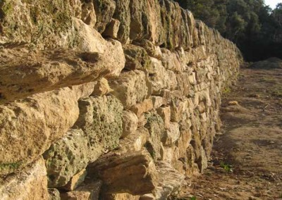 depierresetdebois-clansayes01-couronnement-vertical-pierre-seche
