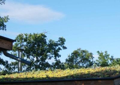 depierresetdebois-hameaudesbuis05-ardeche-toiture-vegetalisee
