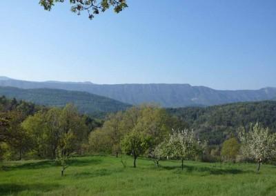 depierresetdebois-mercantour07-paysage-le-cheinet