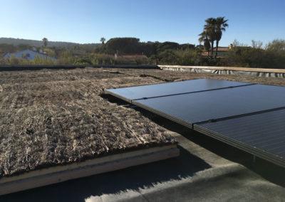 depierresetdebois-ramatuelle34-club55-plage-pampelonne-structure-bois-demontable-chataignier-conception-ecologique-toiture-brande-bruyere-panneau-solaire